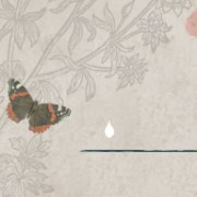 Butterfly animation from the top left of he lost and found site